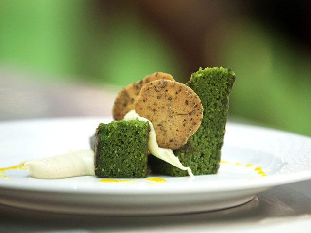 algae cakes
