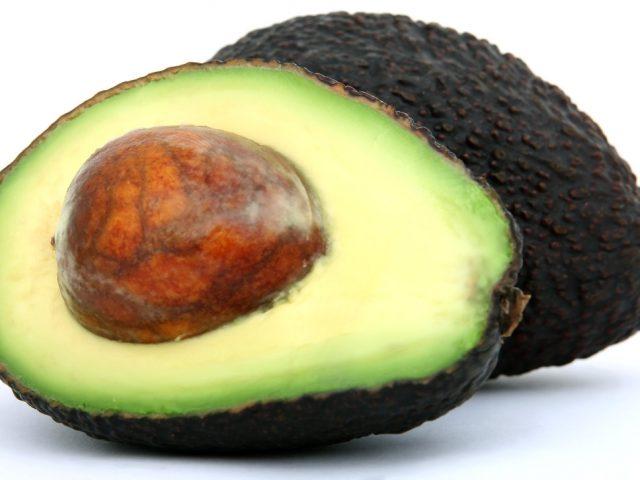 avocado orig