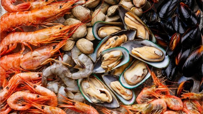 American shellfish could be imported to Spain for the first time in years
